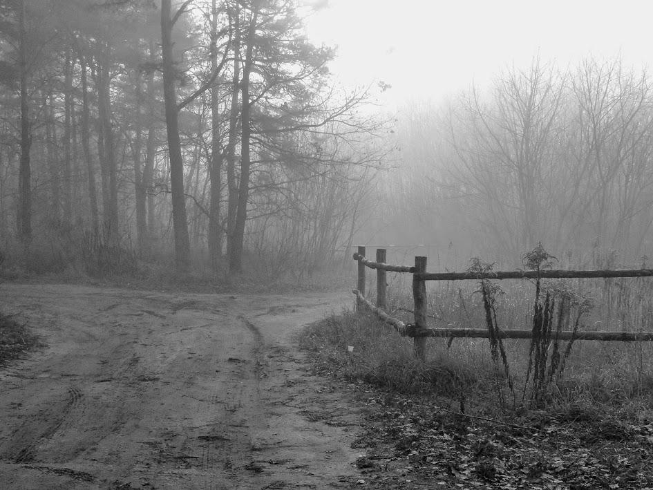 Dystymia – lenistwo czy chandra?